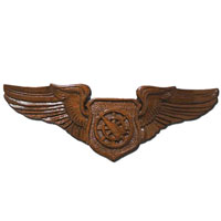 Air Battle Manager Wings Insignia Plaque Wings