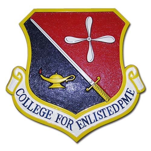 College for Enlisted PME Emblem