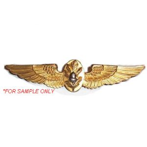 Naval Flight Surgeon Wings