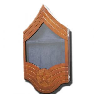 US Air Force E9 Retirement / Shadow Box Natural Light