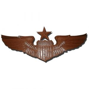 USAF Senior Pilot Wings Insignia Plaque