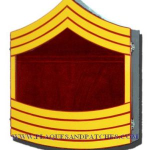 USMC E9 Retirement / Shadow Box Colored